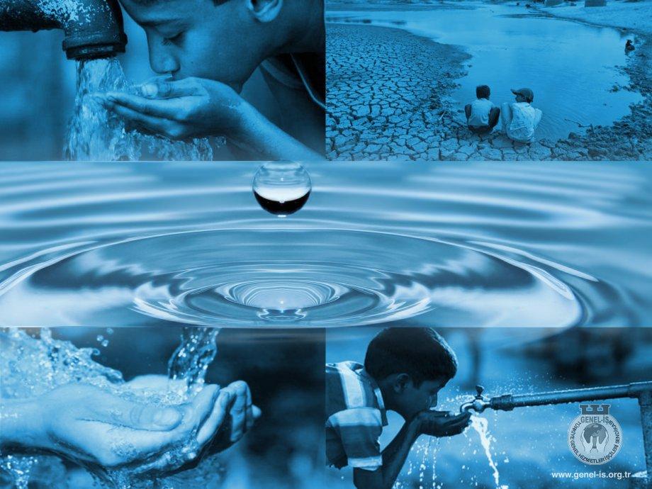 Su Piyasanın Değil, Tüm Canlıların Yaşam Hakkıdır!