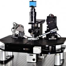 Patch Clamp Mikroskoplar