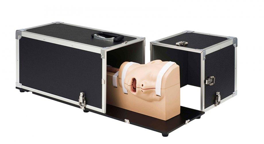 EGD (EsophagoGastroDuodenoscopy) Simulator